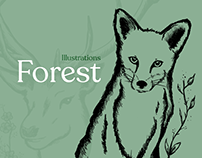 Illustrations - Forest series