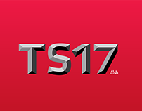 TS17: Team Summit 2017