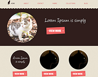 eCommerce online Store Designing
