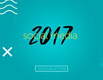 Social Media 2017/1