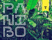 PANIBO | Free Typeface