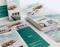 Kit Bravecto to MSD Animal Health