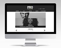 PRO Magazine Website