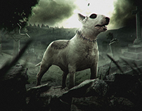 Movie Poster Frankenweenie