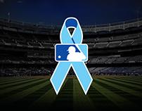 2015 Home Run Challenge