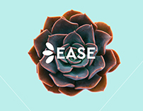 Ease - shop for succulents