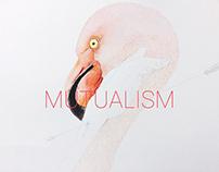共存/Mutualism