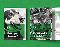 rso196, Animal Shelter (promotional materials)