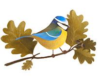 BIRDCEMBER