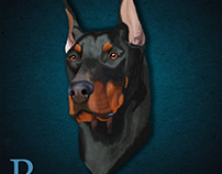 Digitally painted Doberman pinscher in Photoshop CC