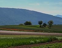 campi d'Abruzzo