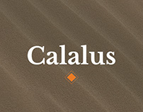 Calalus - Web design