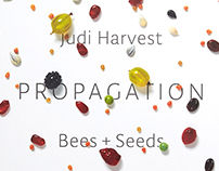 Judi Harvest's Propagation Catalog
