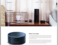 Amazon is Winning - Landing Page Concept