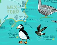 Irish Birds Map
