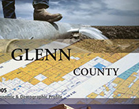Annual Report Series | Publication Design