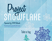 Drexel Co-op Work: Project Snowflake Poster