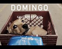 DOMINGO CORTOMETRAJE