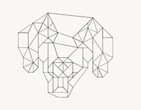 Enzo geometric design