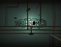 Washinomics