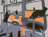 Gatos en el Transantiago