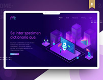 Business Analytics Company - Web/Ui & Illustrations