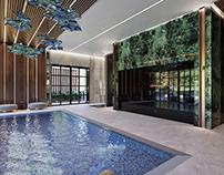 Luxury Swiming pool