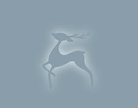 Expecto Christmas - Patronus 2015
