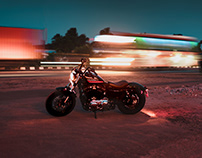 H-D Forty Eight Special.