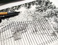Making ink illustrations in color