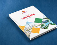 VinGroup Annual Report 2015