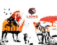 KV LIONS Marketing Digital