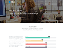 Peak WordPress Theme Responsive Multi-Purpose Template