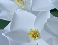 Paper Magnolias