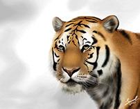 Tigre - Pintura Digital