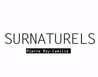 Pierre Roy-Camille - Chronoprod - Fondation Clément