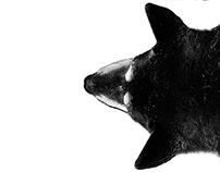 Dog (De)tails