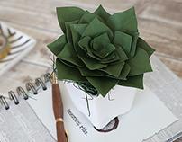 3D Paper Succulent