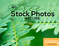 40 Free Nature Stock Photos