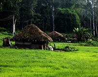 Kerala Tour and Travel Destinations