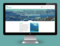 Norconsulting - Webdesign, logo and business card