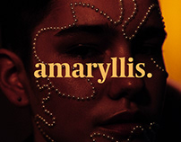 Amaryllis 18