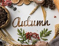 Autumn & Winter sign