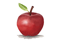Apple (Semester 1)