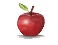 Apple (Semester 1)