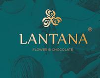 LANTANA Brand Identity