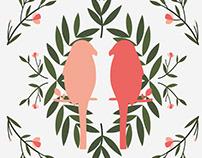 Parakeet Patterns