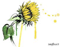 Collaborative work - Floral