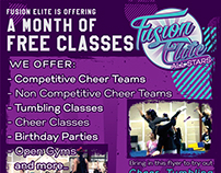 Fusion Elite Set of Flyers