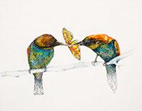 Hummingbirds & butterfly